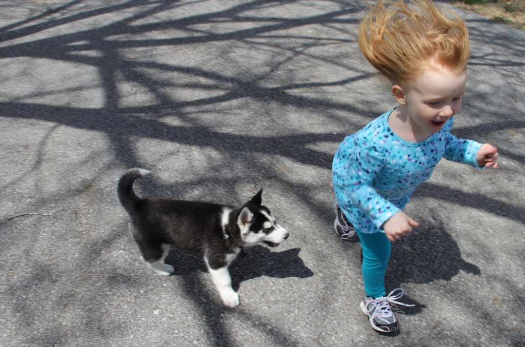 Calling All Young Trainers! Training class for kids and their dogs. @ Santa Fe Tails